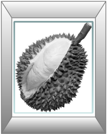 /copyrighteous/images/durian_gray.png