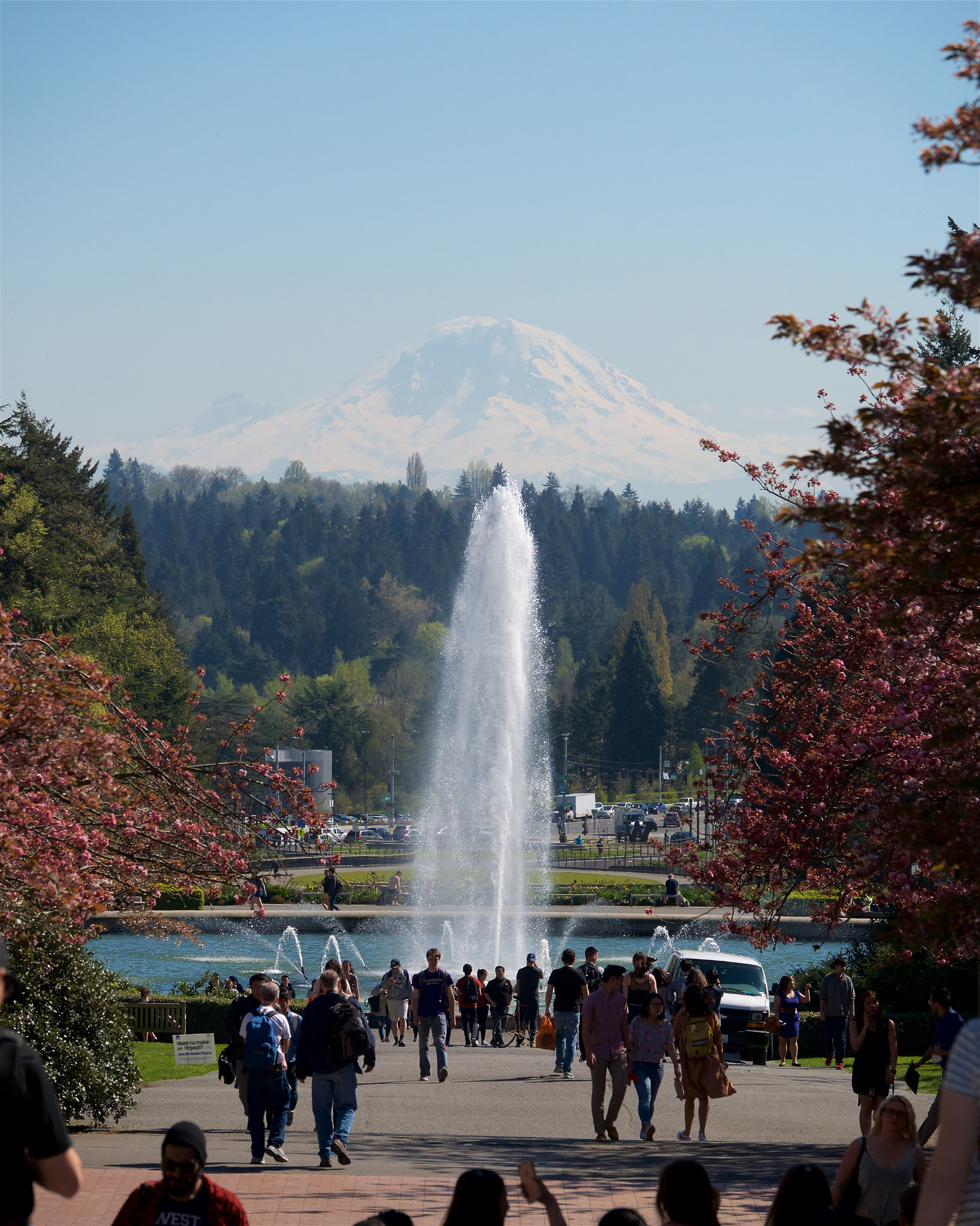 Drumheller Fountain and Mt. Rainier on the University of Washington Campus